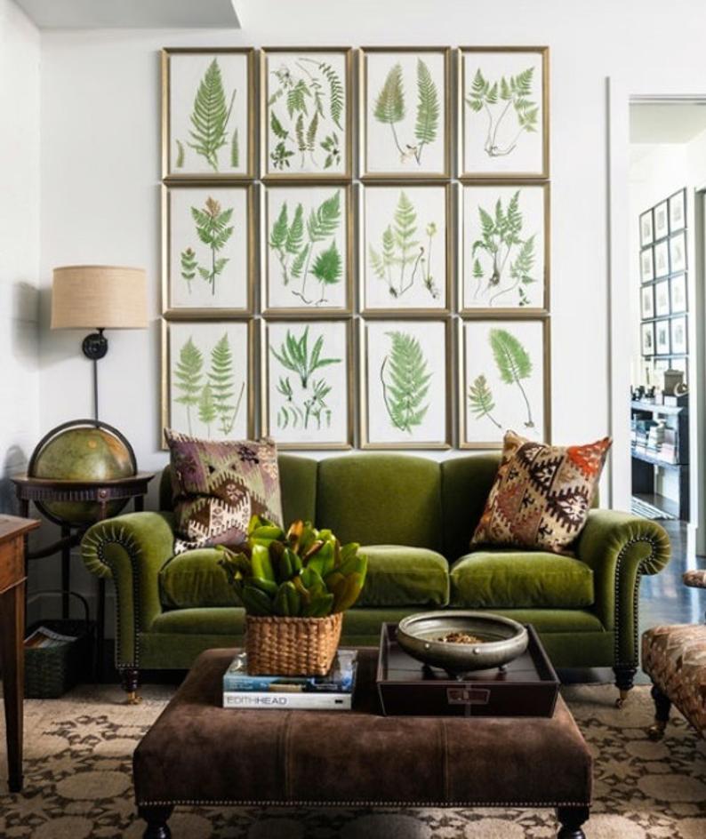 vintage decor plant prints