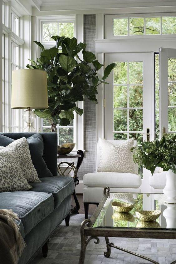 traditional living room decor plants