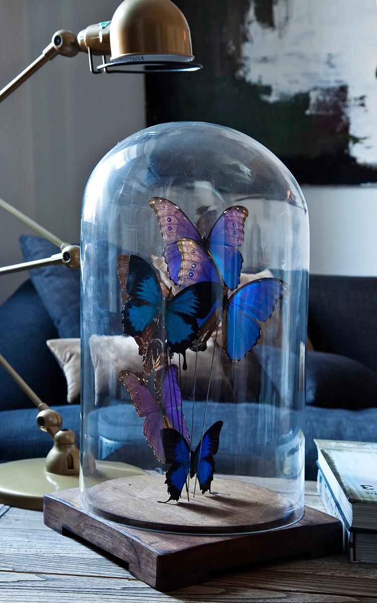 victorian home decor  butterflies